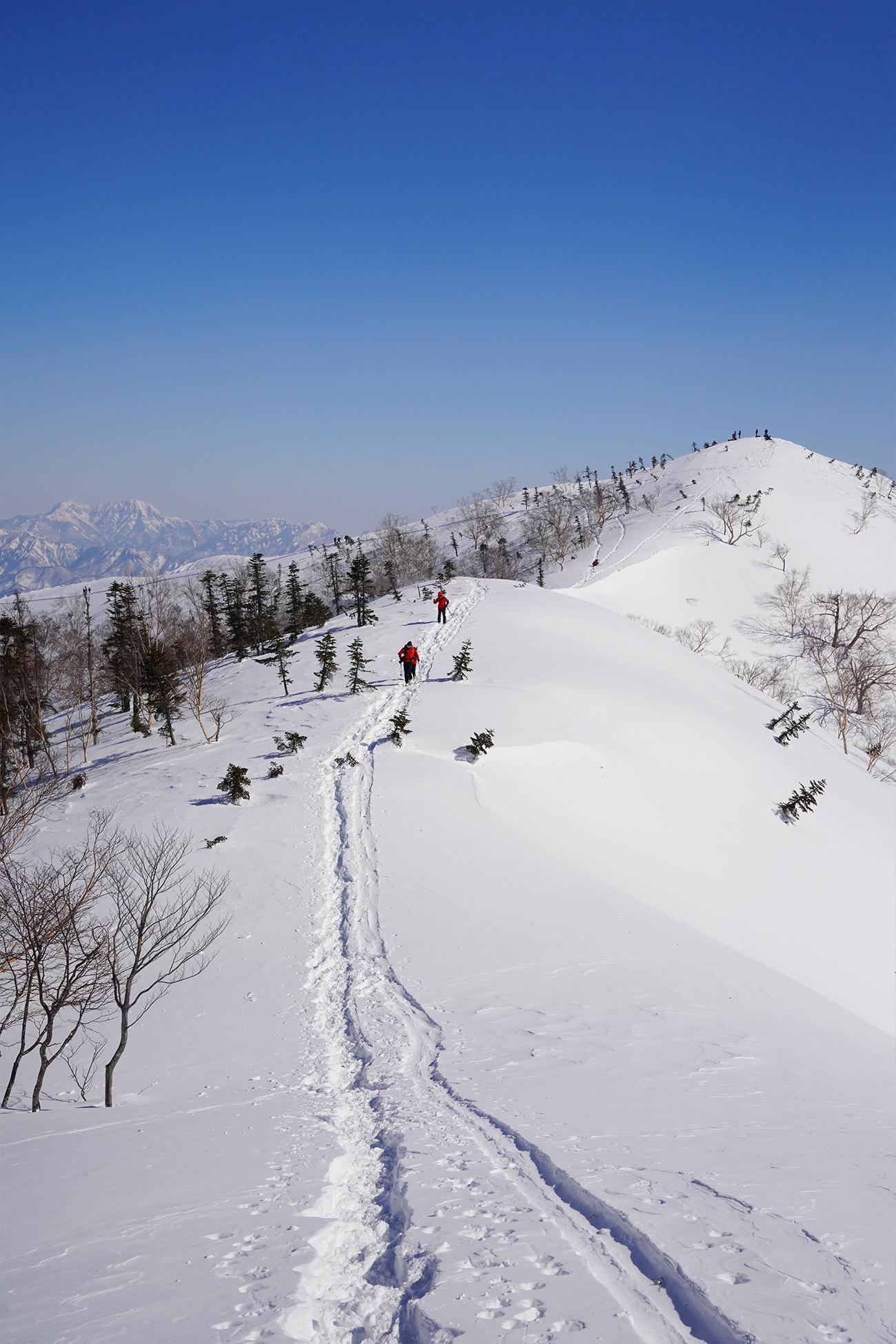 五竜岳 遠見尾根 冬季登山