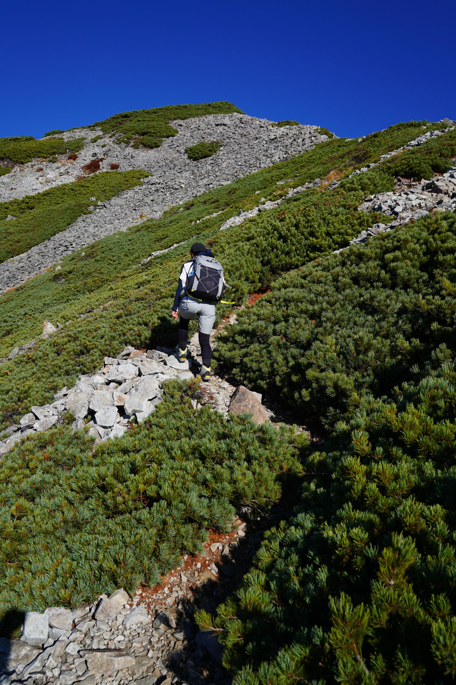 針ノ木岳 登山