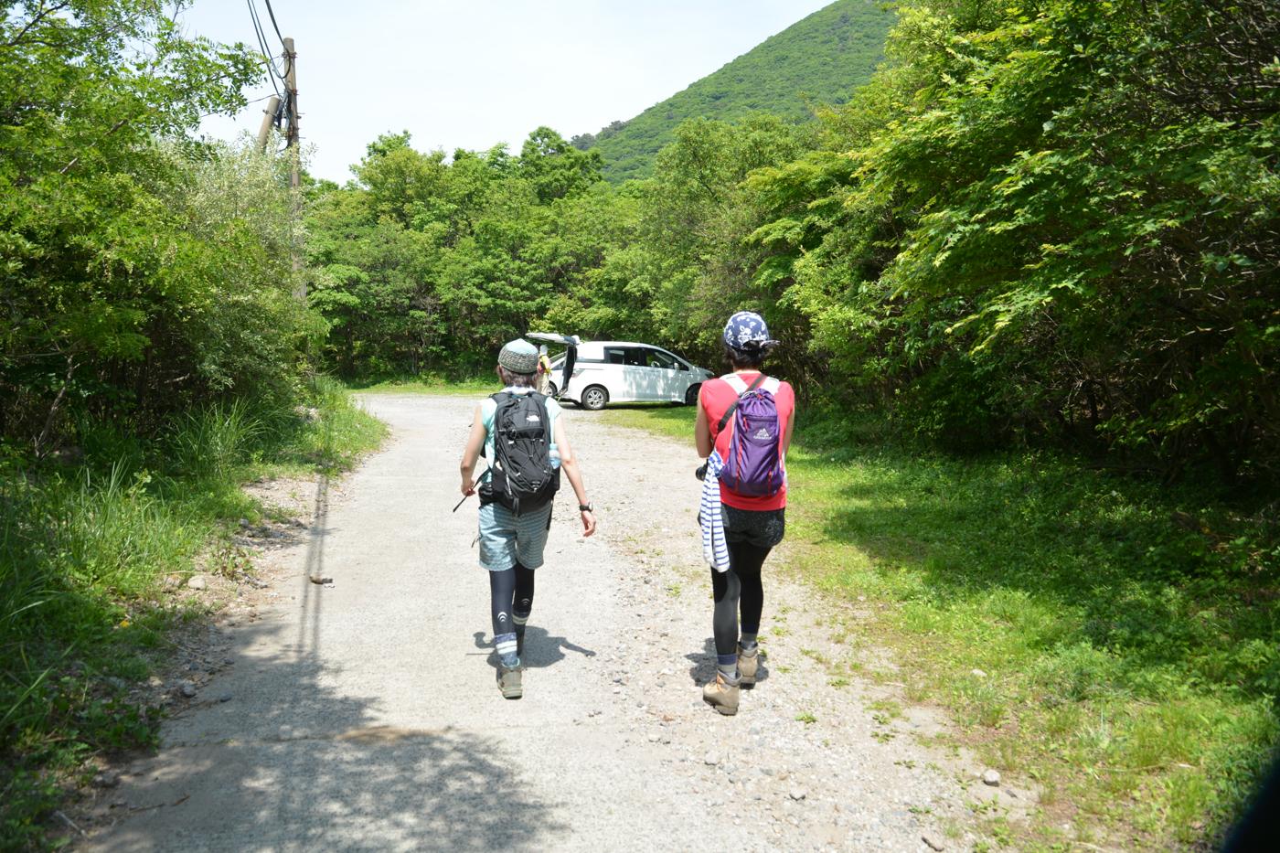 九重山 ミヤマキリシマ登山