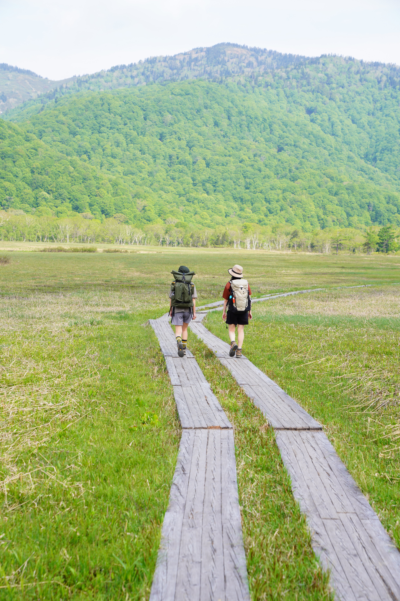 尾瀬 原の小屋泊 水芭蕉ハイキング