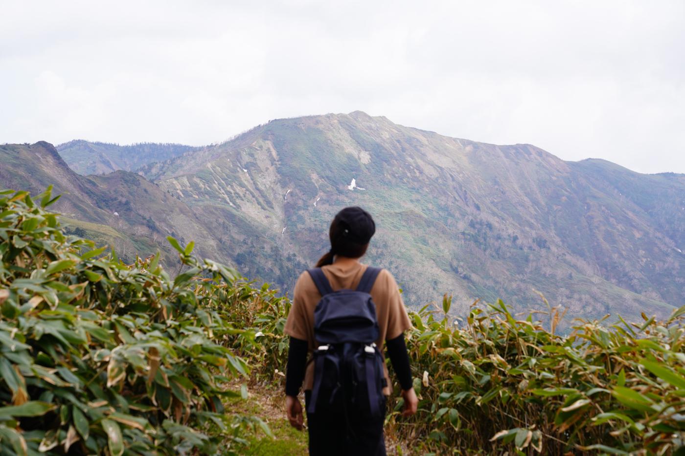 白砂山 シラネアオイ登山